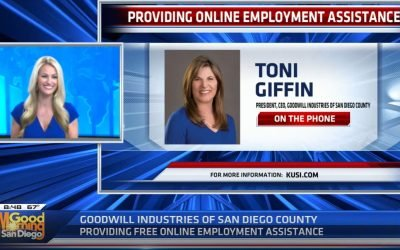 Providing Online Employment Services